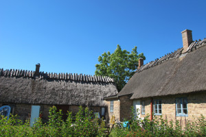 VenThatchedRoof